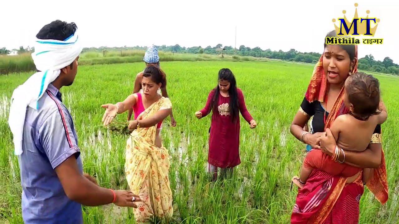 रामलाल के मालिक संगे धानक खेत में महाभारत   RAMLAL KA COMEDY  MITHILA TIGER COMEDY   MAITHILI KHUSHI