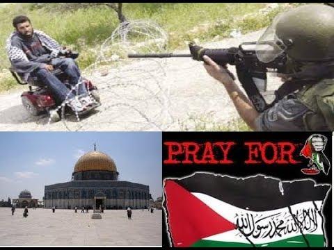 FREE PALESTINE, PRAY FOR PALESTINE