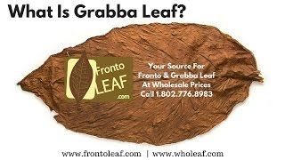 What Is Grabba Leaf | Grabba Leaf Is A Way Of Smoking Fronto Leaf
