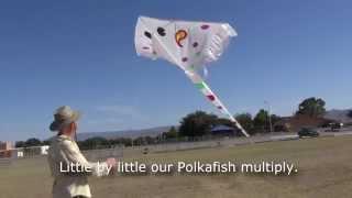 Ghost Stingray Kite in Coalinga Thumbnail