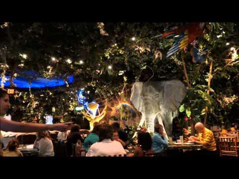 Rainforest Cafe, Downtown Disney, Walt Disney World Resort