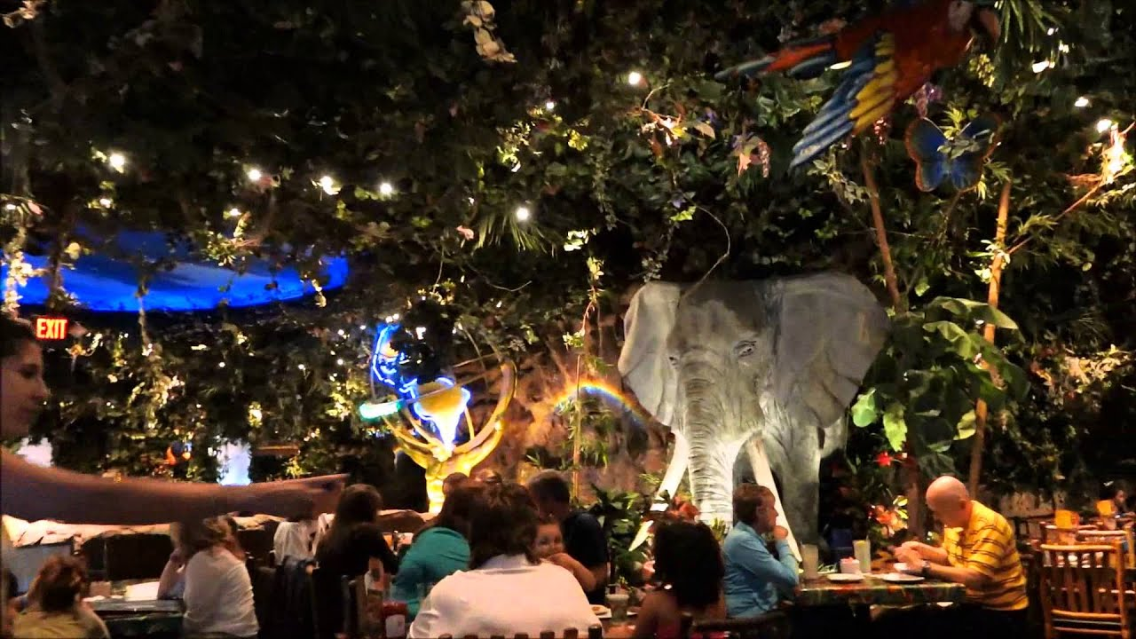 About Rainforest Cafe