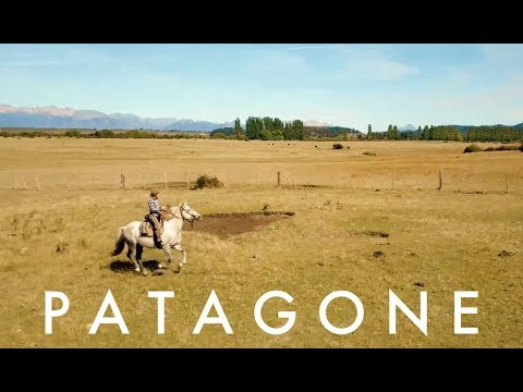 Patagone: 1 Woman. 1 Dog. 2 Horses. 1,000 Miles Across Patagonia.