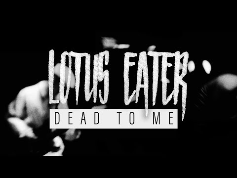 Lotus Eater - Dead To Me (Official Music Video)