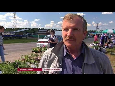 В Томском районе прошла традиционная ярмарка садоводов и фермеров