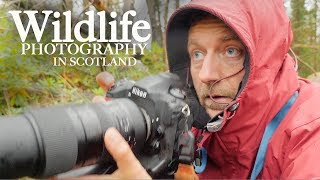 Photographing WILDLIFE and LANDSCAPES in SCOTLAND | With Adam Karnacz from First Man Photography