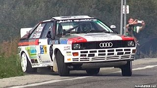 12° Rally Legend 2014 - PURE Rally Car SOUNDS and SHOW!