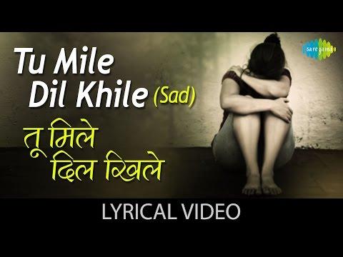Tu Mile Dil Khile with Lyrics | तू मिले दिल खेले गाने के बोल | Kumar Sanu| Alka | Criminal | Manisha