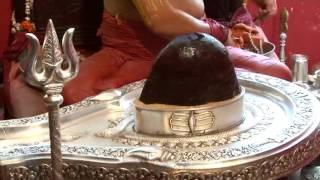 Sampoorna Rudrabhishek Ashtadhyayee