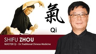 How to meet Master Qi - Demonstration of Chi in Traditional Medicine
