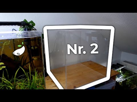 Making The Twin Acrylic Cube Tank - DIY Acrylic Aquarium Build Tutorial