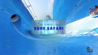 Surf Safari by Polin