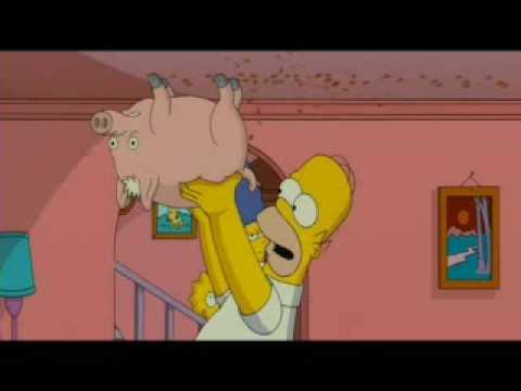гомер симпсон со свиньей видео