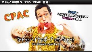 ピコ太郎がスマホゲームに初登場! にゃんこ大戦争でコラボ記念キャンペ...