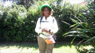 Camping Wilderness Surprise  ... GloZell & SK