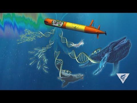 Using advanced technology to survey marine biodiversity