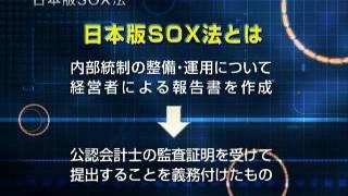 内部統制 日本版SOX法