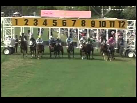 Barbados horse racing,Sandy Lane Gold Cup Day 2013