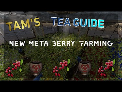 Rust | Tam's Tea Guide (Berry Farming) |