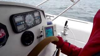 Edel 35 Catamaran