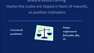 Reward Based Training. What Is It?