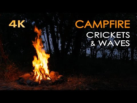4K Campfire by the Sea - Crickets & Ocean Waves - Night Forest Nature Sounds - Relaxing Fireplace