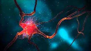 Infection, Head Cold, Binaural Beats   Brainwave Entrainment