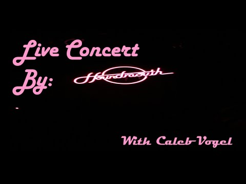 Houndmouth Concert Live 2016