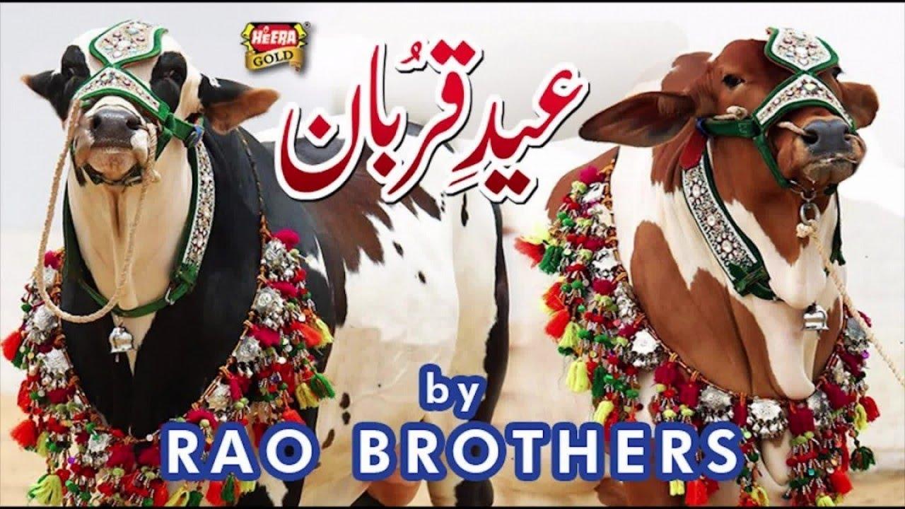 rao brothers eid e