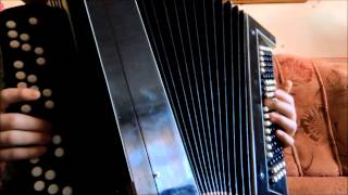 Skrillex - Kyoto. Accordion Cover. ( на баяне )