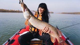 Трофейная рыбалка в КАЗАХСТАНЕ Самая сильная щука Судак Щука Налим