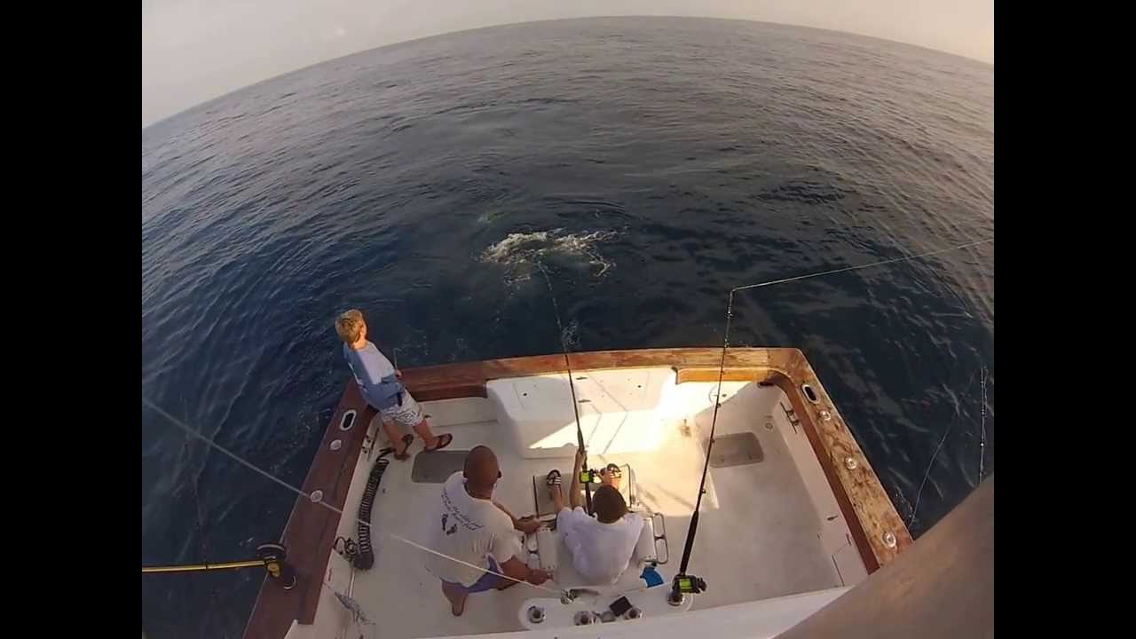Fishing In Charleston Sc Deep Sea Offshore Charter