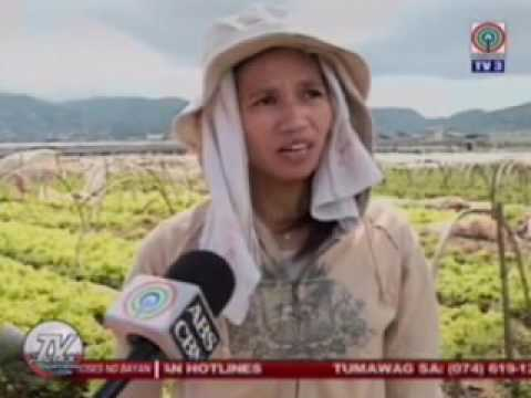 TV Patrol Northern Luzon - Oct 24, 2016