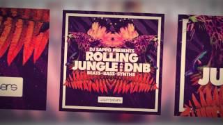 DJ Sappo Presents: Rolling Jungle DnB (Royalty Free Samples Loops)