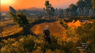 The Witcher 3 GTX 580 Core 2 Duo two thread