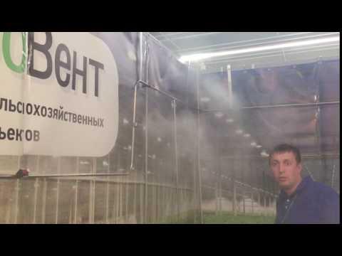 Сельское хозяйство -