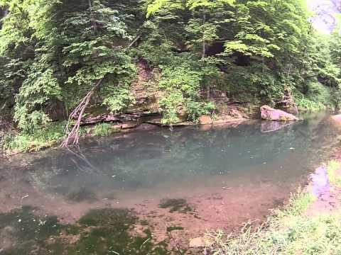 yellow river forest iowa trout fishing
