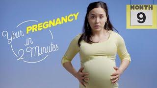 9 месяцев за 2 минуты: что происходит с женским телом во время беременности?