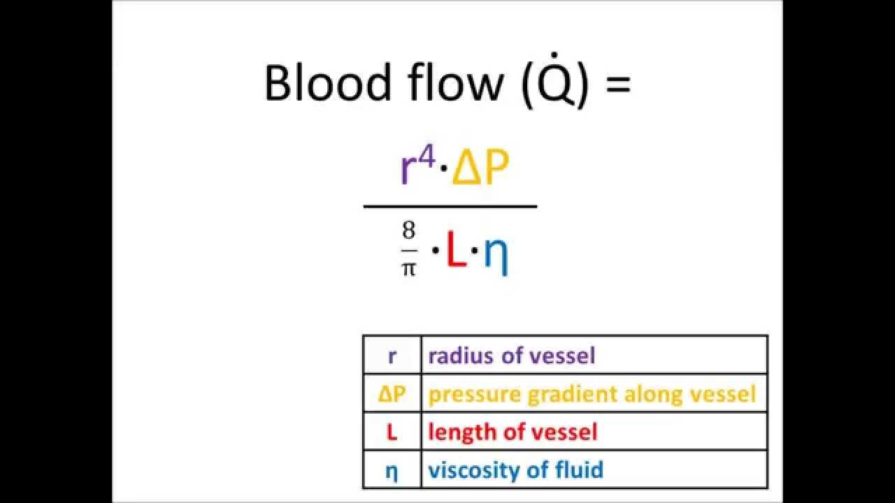 Poiseuille's Law of Laminar Flow (music video) YouTube