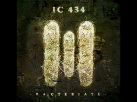 IC 434-Bacteriate