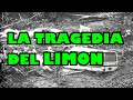 A 32 años de la terrible tragedia del Limón