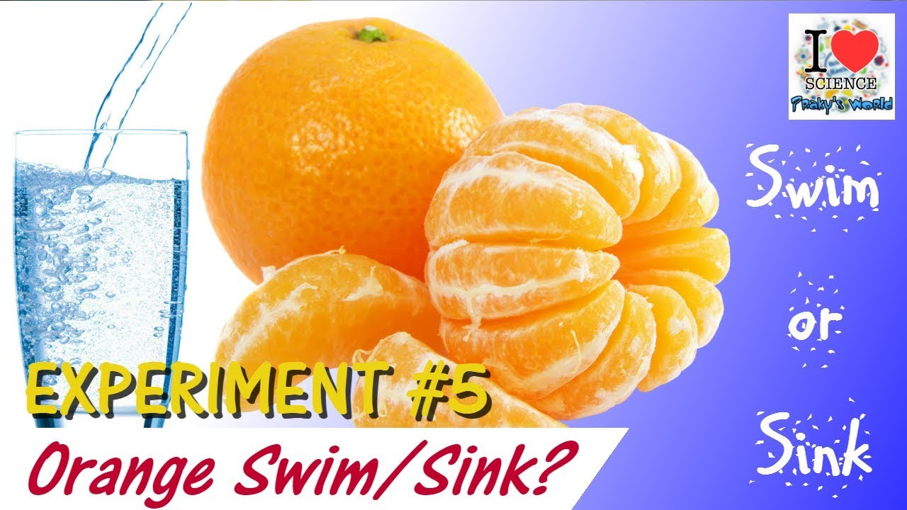 Orange Swim And Sink Experiment Science Experiments For