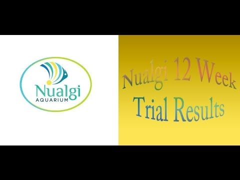 Nualgi 12 Week Trial Review ~ Amber's Aquariums