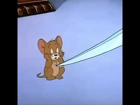 İnstagram üçün bir video.(Tom Və Jerry)
