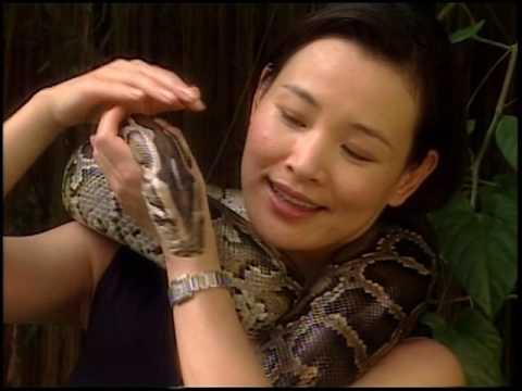 WildAid PSA - Joan Chen
