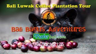 71178064759084405e0a80_lempuyang Bali Coffee