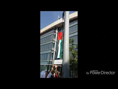 Uae flag day @ reem emirates aluminum.