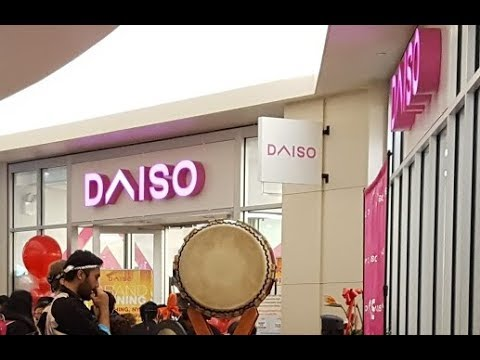 Daiso At Skyview Center Flushing Queens New York