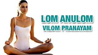 Lom Anulom Vilom Pranayama | Yoga For Beginners