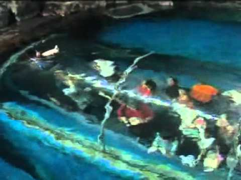 Preview Underwater World Langkawi - YouTube